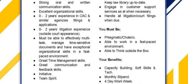 Paralegal Role at Mylaw.ng